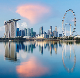 export-to-singapore-image