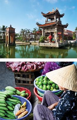 export-to-vietnam